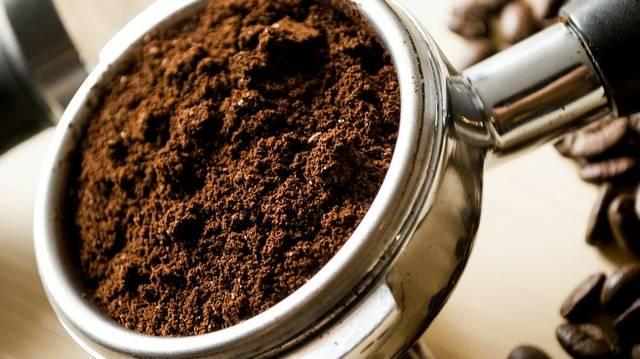Honnan származik a kávé?