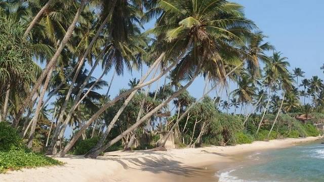 Az alábbiak közül melyik NEM sziget?