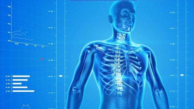 Hol a legvékonyabb a bőr az emberi testen?