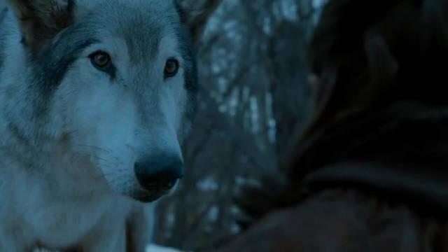 Nymeria elég kevés szerepet kapott eddig sajnos.