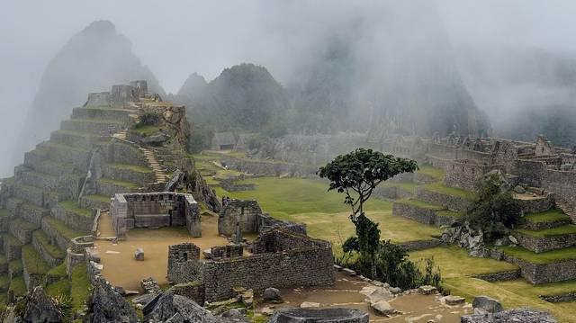 Bolívián kívül az egyetlen ország Peru, ahol a kokalevél (a Coca-Cola alapanyaga) termesztése nem tiltott. Felismered a kokacserjét?