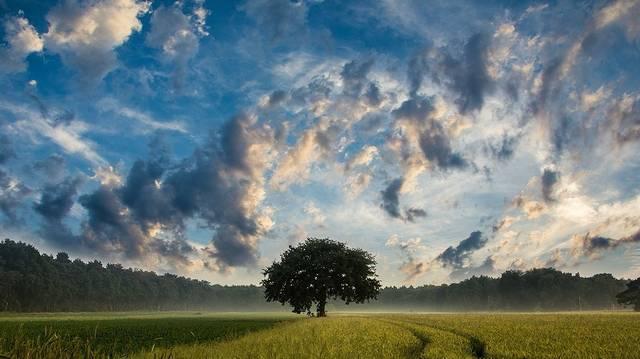 Melyik felhőtípus a legnagyobb az alábbiak közül, amelyből jelentős mennyiségű csapadék eshet?