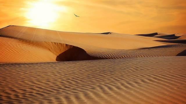 Azt tudjuk, hogy a sivatagokban nagy a hőmérsékletbeli eltérés a nappali és az éjszakai értékek. De hány fok a különbség?