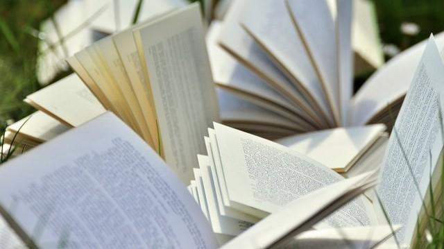 Ki írta az Orlando és Az évek című regényeket?