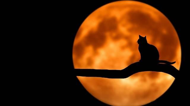 Melyik bolygó egyetlen holdja a Hold, azaz melyik bolygó körül kering egyetlenként?