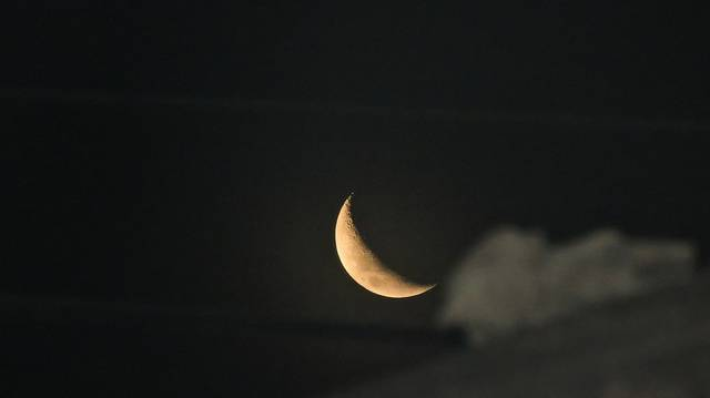 Kinek a műve a Holdfény szonáta?