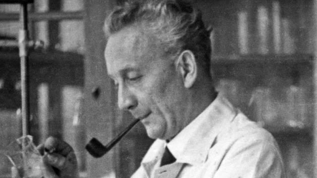 Milyen Nobel-díjat kapott Szent-Györgyi Albert?