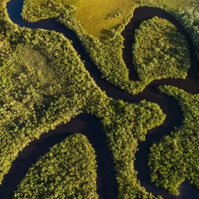 Amazonas, Dél-Amerika