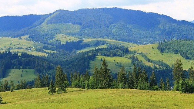 Hol található a Gerlachfalvi-csúcs?