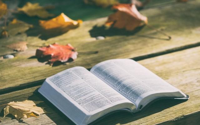 Bibliai kvíz .Mózes idejétől Jézus születéséig. 20 érdekesség.