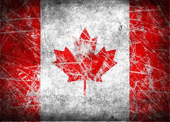 Mi Kanada nemzeti állata?